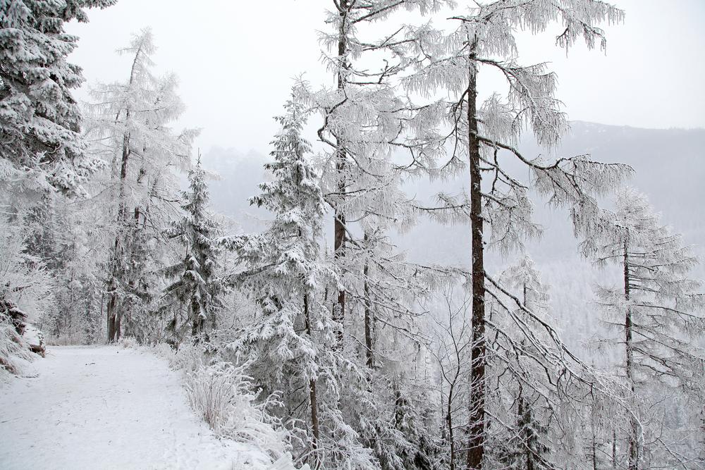 Słowacja, zimowy szlak górski w Tatrach Wysokich